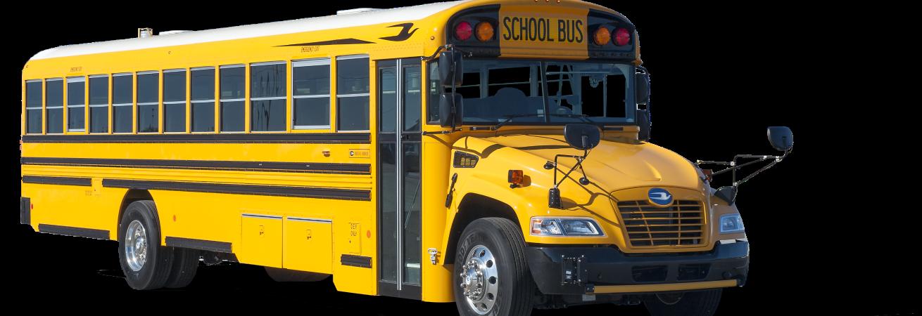 schoolbusslide